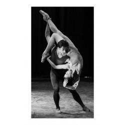 Natalia Osipova - with Sergei Polunin_au_dance_bw