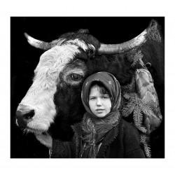 Istvan Kerekes - portrait from Transylvania