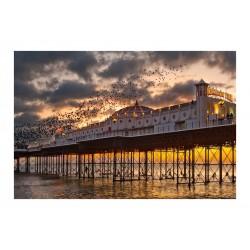 Charles Hobley - Brighton Pier - England_ph_land_flickr.com+people+151904655@N04