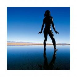 Jean Paul Bourdier - Bodyscapes_ph