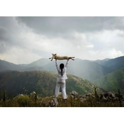 Marina Abramovic - Holding the lamb