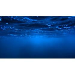 Marina Vernicos - Sea Through_ph_land