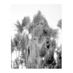 Brian Oglesbee - Figure  Foliage
