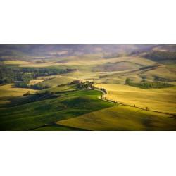 Stephane Couture - Toscany_ph_land_www.stephanecouture.com