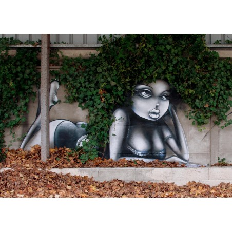 Vinie Graffiti 2