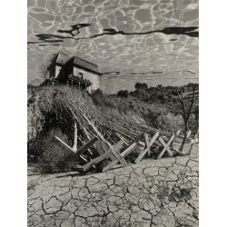 Jerry Uelsmann - Dead_trees - 1978