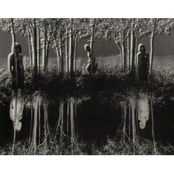 Jerry Uelsmann - Small woods - 1967