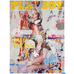 Karin Vermeer -  Kate Moss Playboy