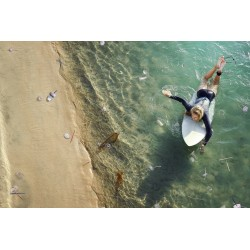 Weston Fuller - Plastic Surf