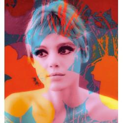 Thomas Dellert - Edie Sedgwick - Andy Warhols Muse