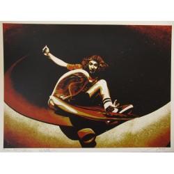 Shepard Fairey - Alva...
