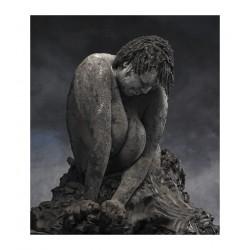 Alain RIVIERE LECOEUR - Chairs de Terre