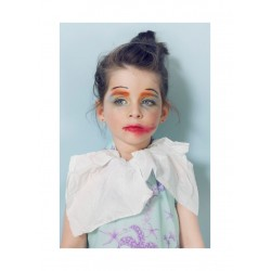 Isabelle Chapuis - MINI-ME project