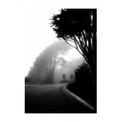 Hengki Koentjoro 1_ph_land_bw