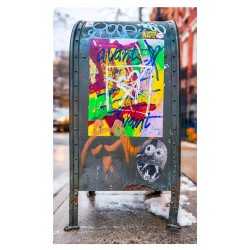 Barton Lewis - US postal relay box  NYC