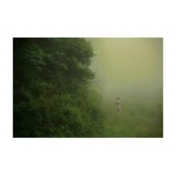 Erik Madigan Heck - The garden 1_ph_nude_green_dark