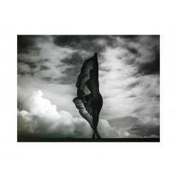 Kesler Tran - nude 2