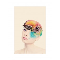 Nicola Gavins - Bird Is The Word - 2010_di