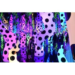 Yayoi Kusama - Love Is Calling - Boston s Institute of Contemporary Art - sept 2019_pa_pmas