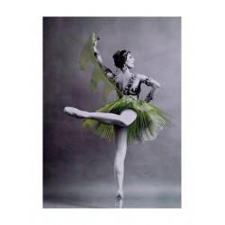 Jose Romussi - Ballerina embroidery 4_au_danc_