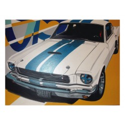 Laurence Delmotte Berreby - Ford Mustang Shelby GT500