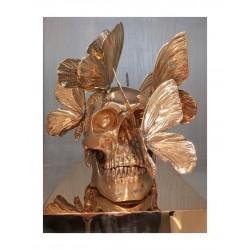 Philippe Pasqua - Golden Vanity_sc_scu_anti