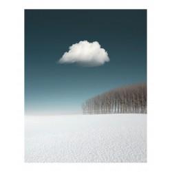 Benjamin Everett - landscape