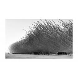 Xavi Bou - Ornitographie 1_ph_bw_land_http!++xavibou.com