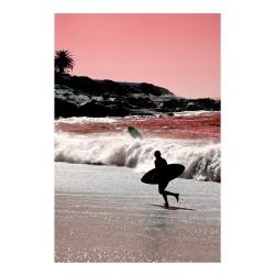Kristin Hart - La Jolla - Coral_ph_land
