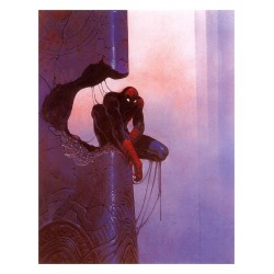 Jean Giraud aka Moebius  - spiderman
