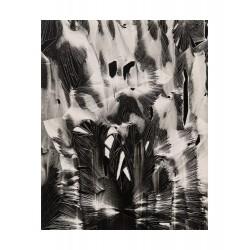 Brett Weston - Cracked Paint - Garrapata 1955_ph_bw_brettwestonarchive.com