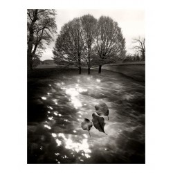 Jerry Uelsmann 8_ph_bw_vint_land