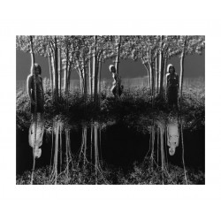 Jerry Uelsmann - Small woods where I met myself - 1967_ph_bw_vint