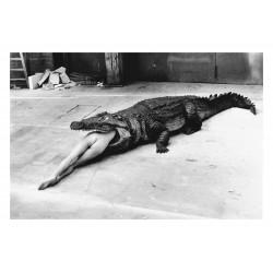 Helmut Newton - Crocodile wuppertal - 1983_ph_mast_bw