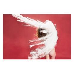 Ryan McGinley - Albino Peacock - rose red_ph_nude